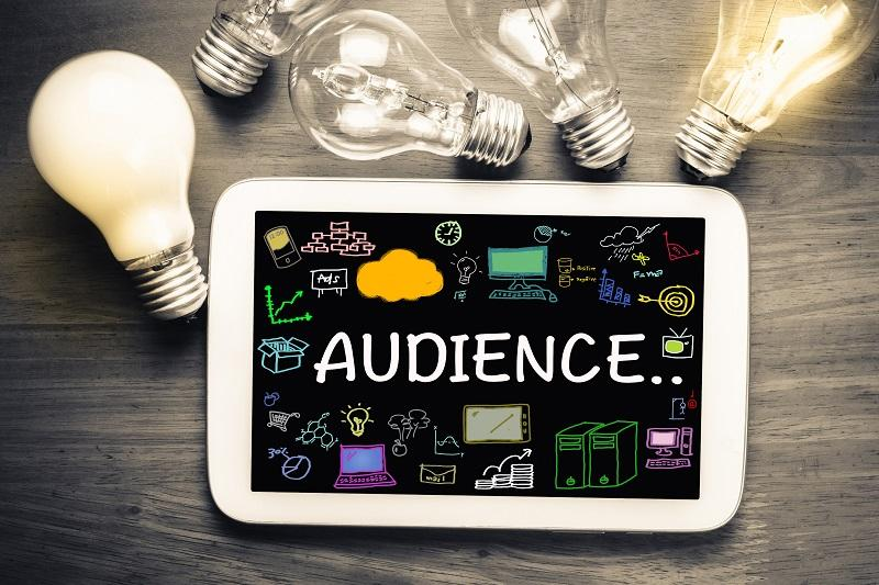 building a marketing plan - audience