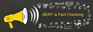 Meet BERT - Google Algorithm update that is fact checking